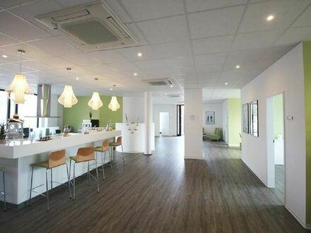 Lichtdurchflutete - repräsentative Bürofläche in topgepflegtem Bürohaus im Gewerbepark Nord zu vermieten!
