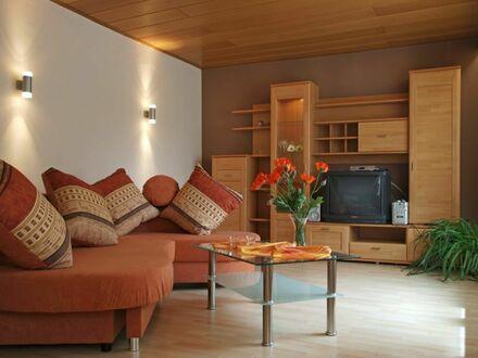Schön und vollmöblierte, allergikerfreundliche 2 ZiKB-Wohnung