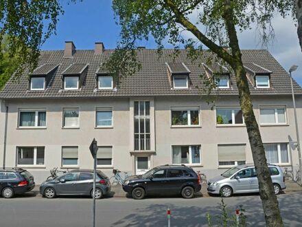 1A Lage - Promenade, Zwinger, Neubrückentor!