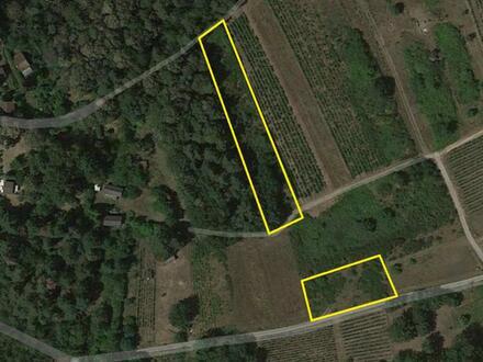 Ackergrundstücke im Naturschutzgebiet mit Fernblick