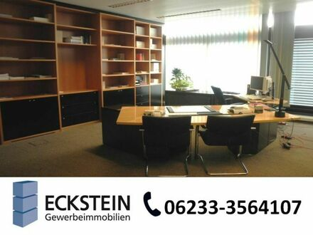 Bürogebäude in Mannheim-Wohlgelegen mit guter Verkehrsanbindung - BR 3903