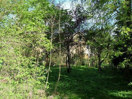 Gut geschnittenes Grundstück in zentraler Lage von Kleinmachnow
