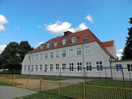 Preuß IMMOBILIEN - Geräumige Zweiraumwohnung in der beliebten Zetkinsiedlung - Ruhe und Entspannu...