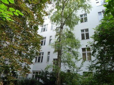 Kapitalanlage: Schöne Altbauwohnung in bester Lage im Bayerischen Viertel