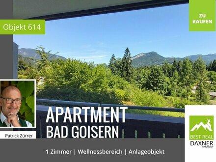 1 Zimmer Apartment in Bad Goisern mit vielen Extras!