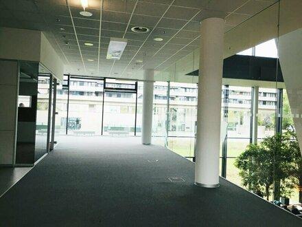 Büro/Schulung - 231 m² - lichtdurchflutet - Neue Mitte Lehen