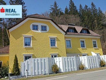 Renoviertes Haus in Unken mit großem Platzangebot