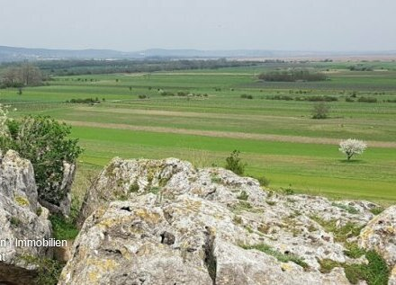 Landwirtschaftliche Nutzfläche 8200m² Nähe Eisenstadt