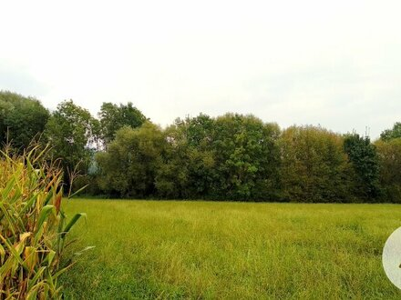 Bauträger-Grundstück