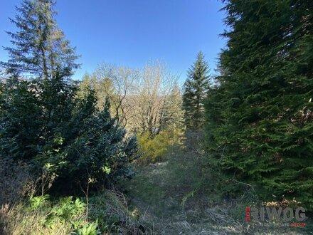 Wunderschönes Grundstück in Waldruhelage