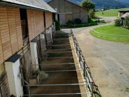 30 Hektar Landwirtschaft in Pacht zu verkaufen