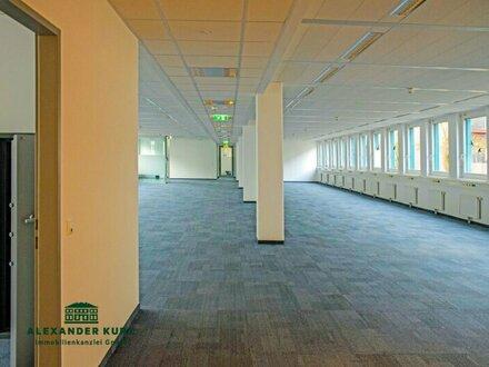 Großzügige moderne Büro-/Ausstellungs-/Geschäftsfläche im Norden Salzburgs
