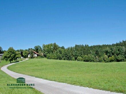 Land- und Forstwirtschaft, ca. 31 Hektar