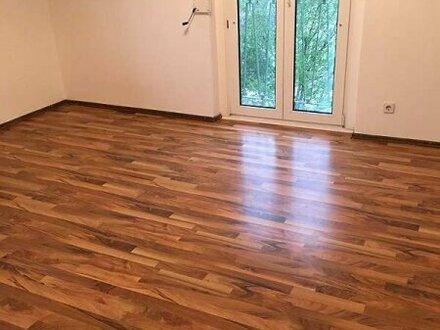 Neu renovierte Wohnung in Baden