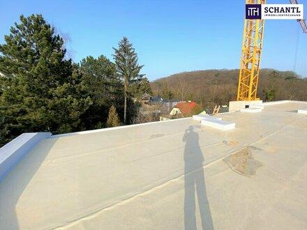 Dachterrassen-Traum: Perfekt aufgeteilte 4-Zimmer Dachgeschoßwohnung mit riesigenTerrassenflächen und atemberaubenden B…