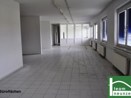 Geschäft, Lager, Werkstatt, Büro! Gewerbepark Donnerskirchen! Ab 25 € Netto im Monat! 10m2 - 1500m2