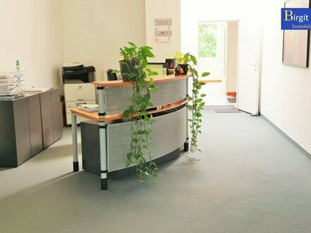 Geräumiges Büro in Top Lage!