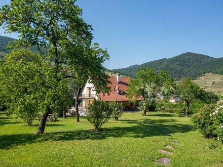 Anwesen in den Weinbergen von Spitz a.d. Donau