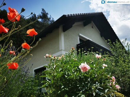 Wohnung mit großem Garten sucht neue Bewohner - Weiten