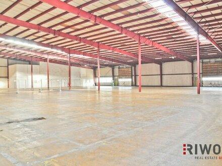 5.000m² Lagerhalle mit Rampen und ebenerdiger Einfahrt! Teilflächen möglich und optionale Freiflächen verfügbar