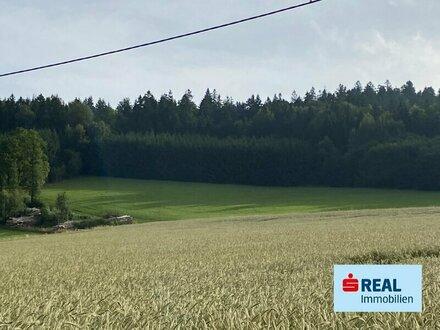 Landwirtschaftlicher Nutzgrund in St. Oswald bei Haslach