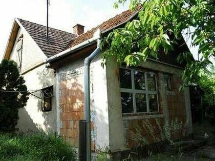 Haus in Ungarn mit 3000 qm Grund