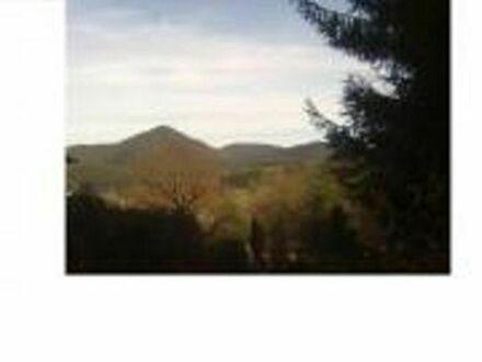 Bauerwartungsland im wunderschönen Erfweiler/Pfalz - Waldrandlage
