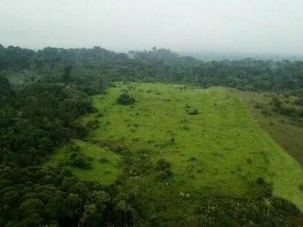 Brasilien 1000 Ha Land bei Erdoel - Erdgas Stadt Silves, Amazonas, Brasilien.