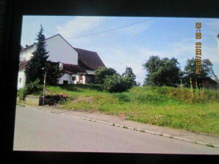 Toller Bauplatz in Haigerloch Hart für EFH DHH oder MFH