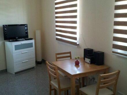 Möbliertes Einzimmer Apartment zu vermieten