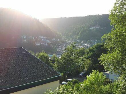 Helle ruhige 5 ZKB, 145 qm, mit Aussicht über Bad Liebenzell