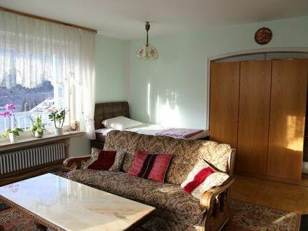 1 Zi. Apartment, sowie 1 große Küche mit Essplatz, Dusche, WC, Terrasse