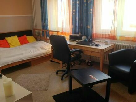 1-Zimmer-Appartment in Mannheim Käfertal zur Untermiete