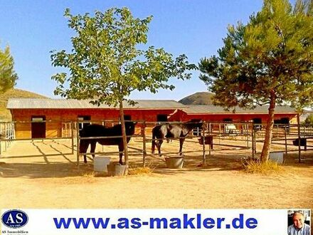 *Sonderpreis* Pferderanch mit 2 Häuser auf 138000 qm Land sehr günstig zu verkaufen!!!