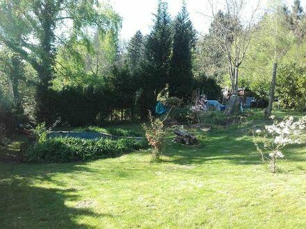 Sonniges Freitzeit-/Gartengrundstück in Brandau (DA-DI Kreis)