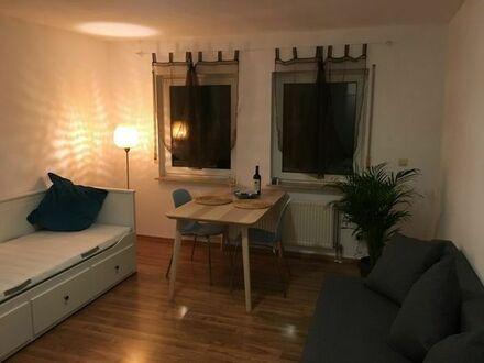 Vollmöblierte, neuwertige 1-Zimmer-Wohnung mit EBK in Mannheim