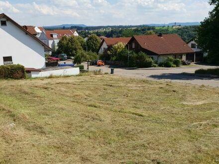 Exklusiver Bauplatz in bevorzugter Lage von Ebersbach/Fils