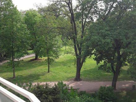 Neu renovierte Wohnung am Luisenpark