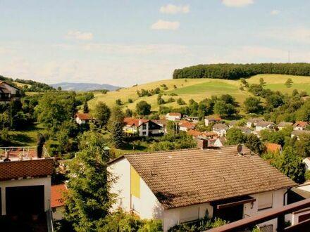 einzigartiger Blick über den Odenwald