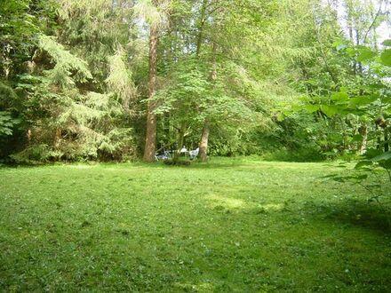 Wochenendgrundstück in Schnait 71384 Weinstadt1383 qm.Sehr schöne Lage an Waldrand mit Bachverlauf