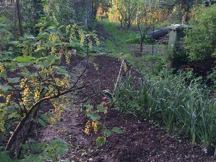 Gemeinsam Garten nutzen in Ettlingen