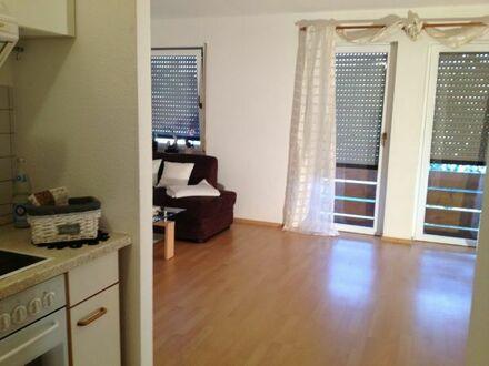 Großzügig geschnittenes helles 1-Zimmer-Appartment in Pforzheim-Mäurach von privat zu vermieten