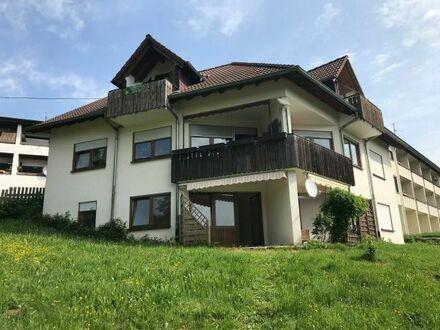 Neu renovierte Einzimmer Erdgeschoss-Wohnung mit Einbauküche im Nordschwarzwald