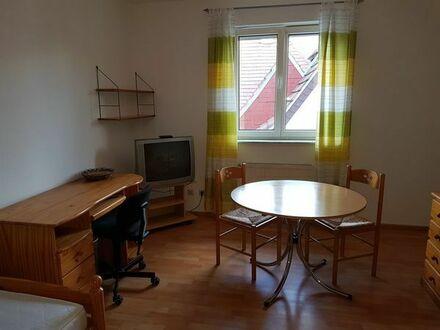 1 Zimmer-Appartement möbliert