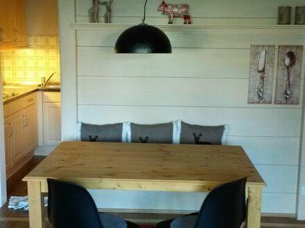 Eingerichtetet 1-Zimmer-Küche-Bad-Terrasse im EG - ab sofort zu vermieten