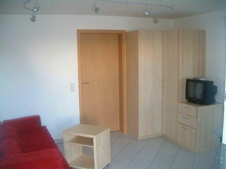 schönes möbl. 1-Zimmer-Appartement, evtl. schon ab 06/18 frei!
