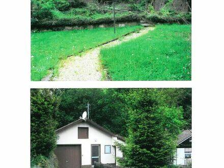 Baugrundstück in Waldrandnähe mit Bachlauf