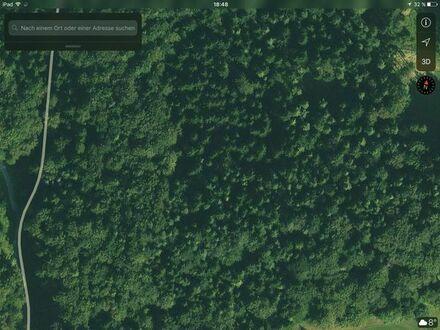 Wald zuverkaufen