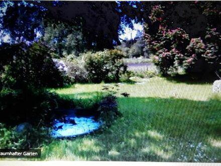 Kleines Haus mit großem Garten