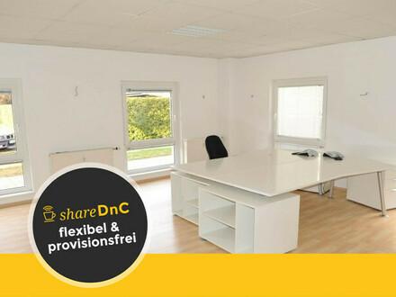Moderne Büroräume mit großen Fenstern. Parkplatz, Küche, Flipperautomat! - All-in-Miete